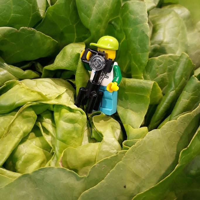 Legomannetje fotograferen krop sla