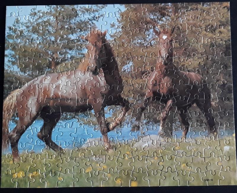 paardenpuzzel