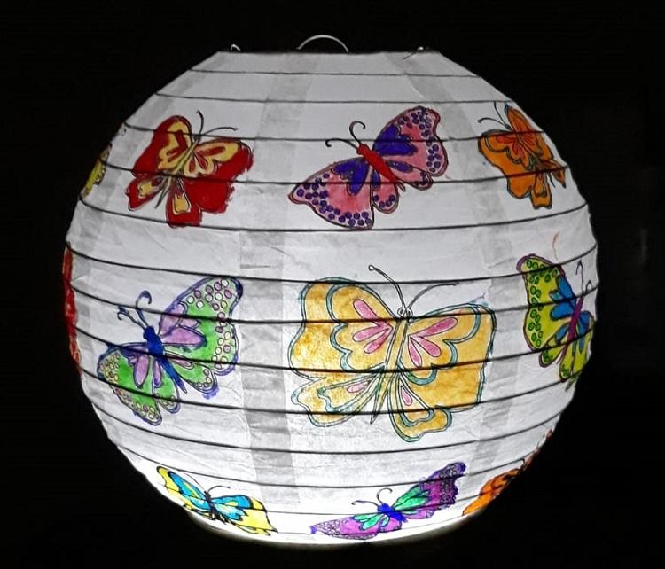 lampion vlinders